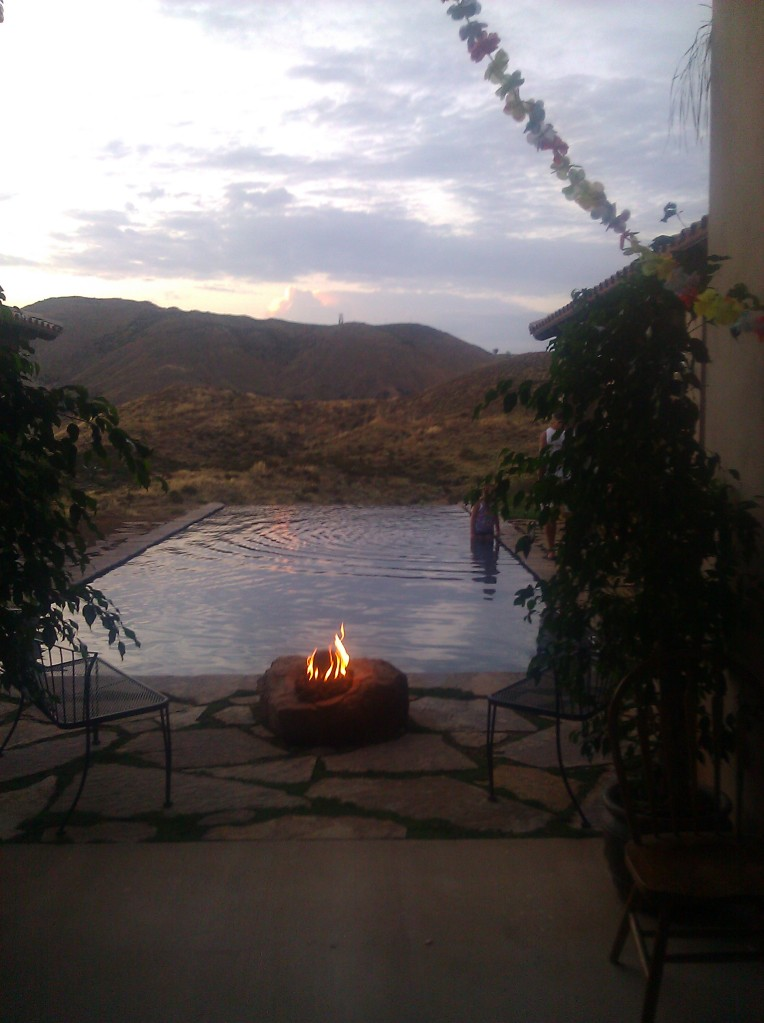 Joy Gardens Friendship Flame at Sunset